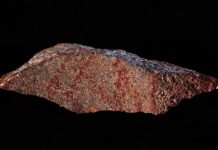 Hallan el dibujo humano más antiguo del mundo