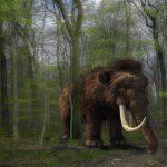 Trabajadores de una carretera hallan restos de animales prehistóricos