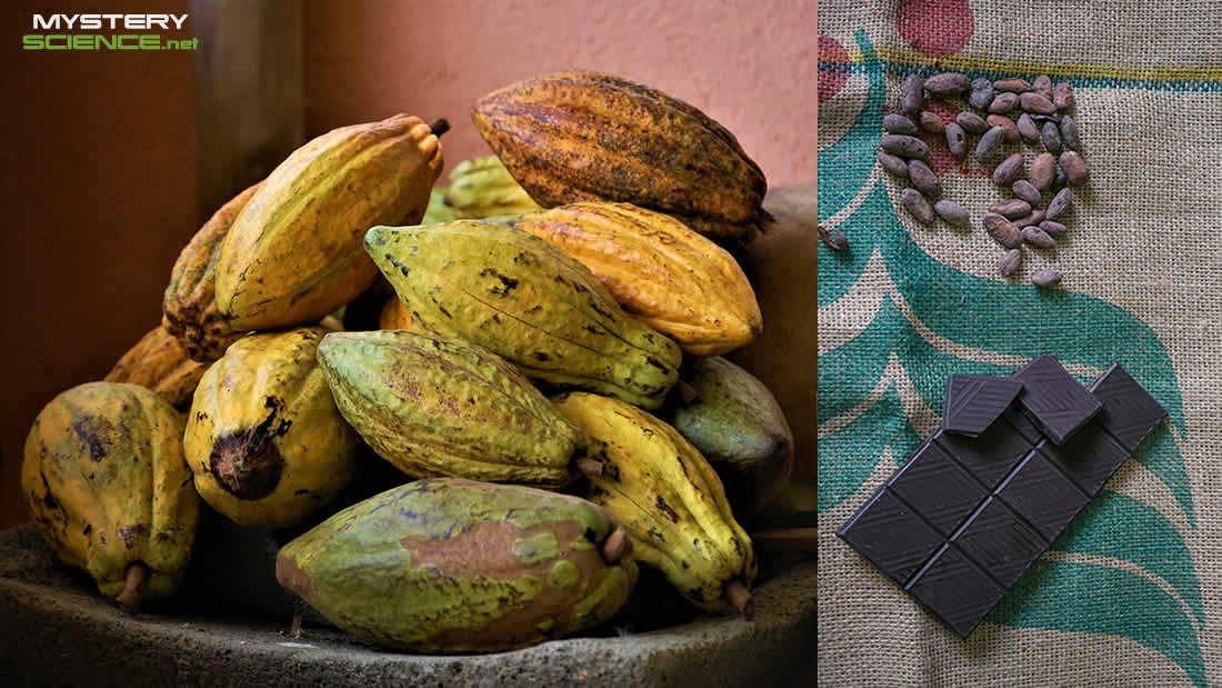El origen del chocolate es más antiguo de lo que se pensaba