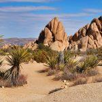 Crean dispositivo que produce agua hasta del aire más seco del desierto