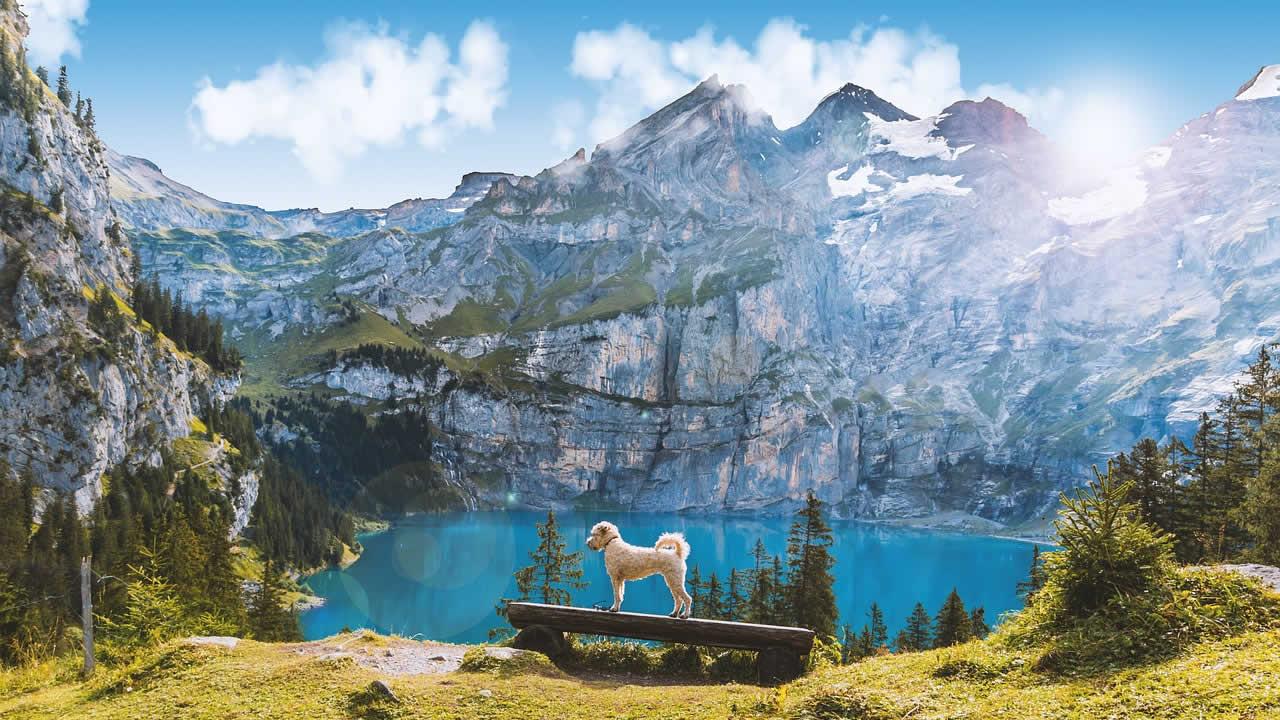 Suiza se está quedando sin nieve, advierte estudio científico