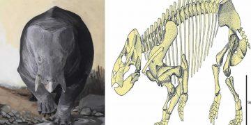Descubren los restos fósiles de un ancestro gigante de los mamíferos