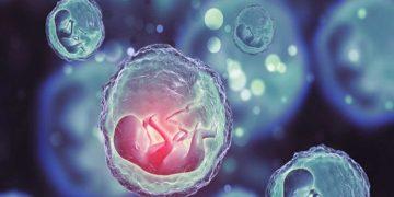 Científico chino afirma haber creado primeros bebés modificados genéticamente