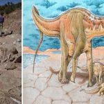 Descubren nueva especie de dinosaurios en Argentina