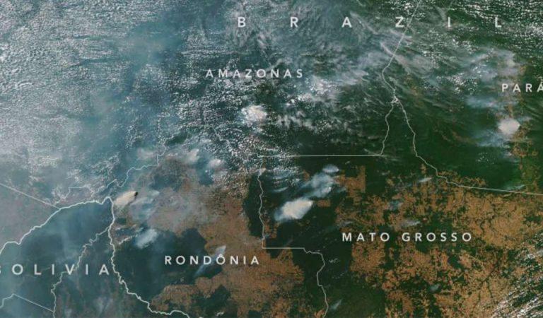 El pulmón del planeta está en llamas (VIDEO)
