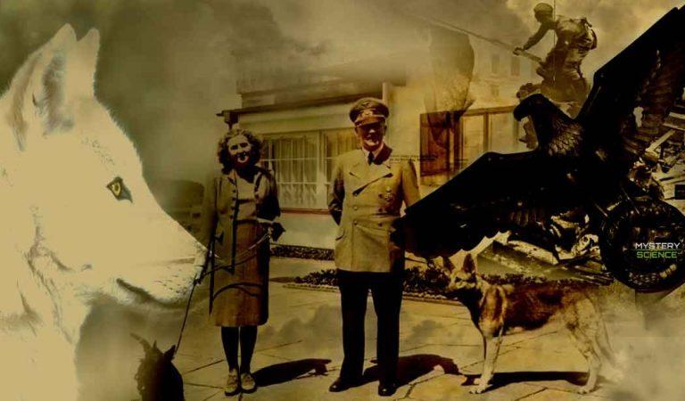 Adolf Hitler y su lado animalista