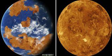 Venus pudo ser un planeta habitable hace millones de años