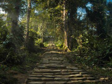 Descubren una ciudad perdida en Colombia relacionada a la leyenda de El Dorado