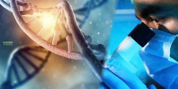 Una nueva técnica podría corregir hasta el 89% de las mutaciones genéticas