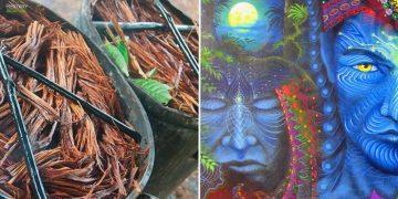 La Ayahuasca y sus poderes ancestrales sobre la consciencia humana
