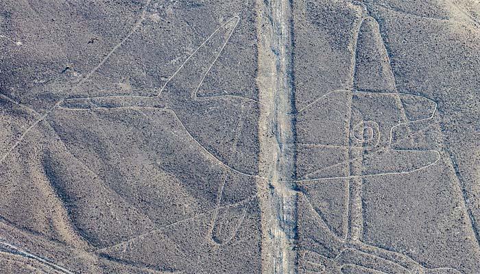 Líneas de Nazca «Ballena»