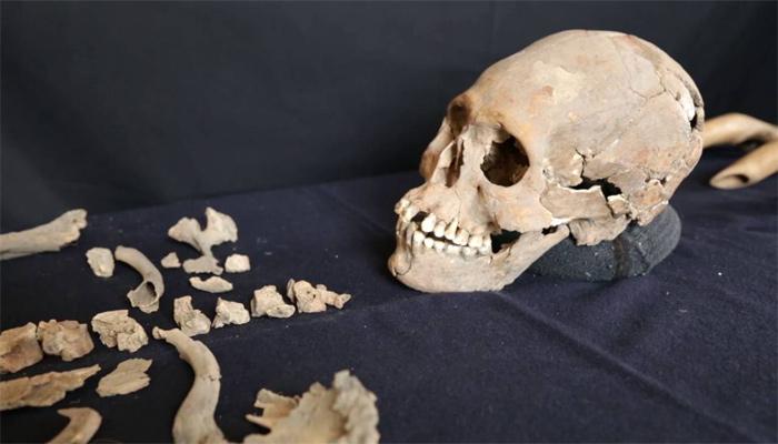 Cráneo de la mujer de Tlaitotlacán