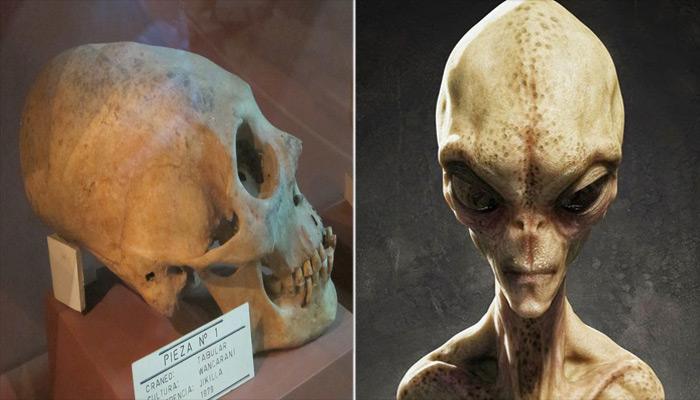 Posibles cráneos alienígenas