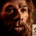 Hallan un collar de 40,000 años de antigüedad hecho por neandertales