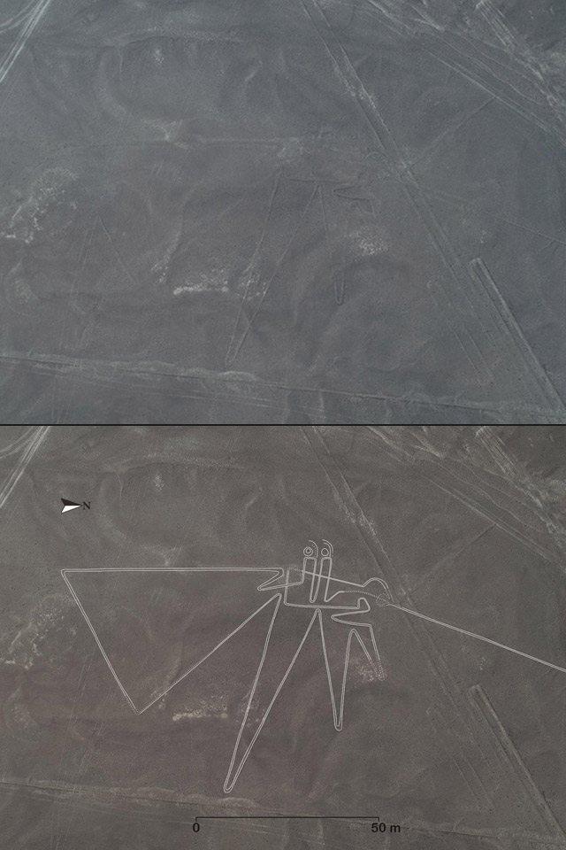 Nuevos geoglifos en las Líneas de Nazca