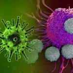 Desarrollan nuevo virus híbrido que elimina todo tipo de cáncer y tumores