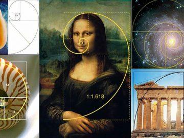 La proporción áurea, el patrón presente en la naturaleza y el universo