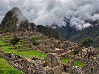 Plantarán 1 millón de árboles alrededor de Machu Picchu