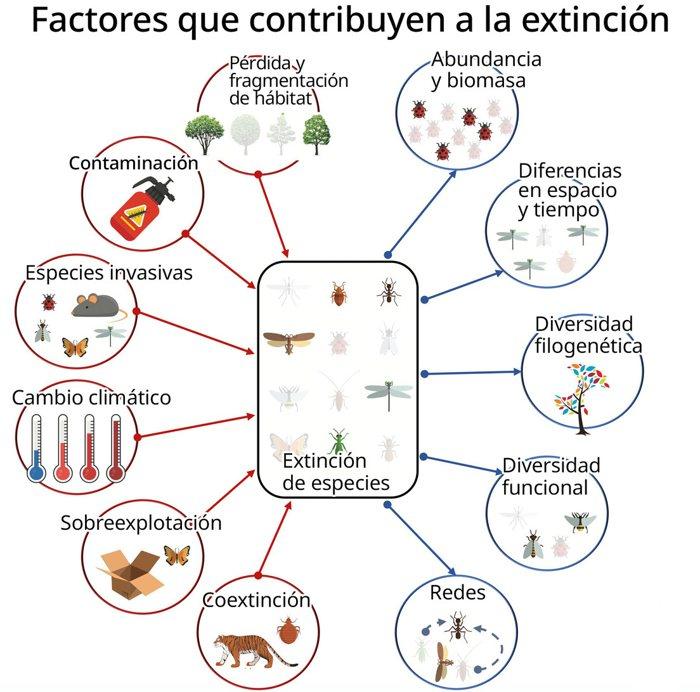 Factores que contribuyen a la extinción de insectos