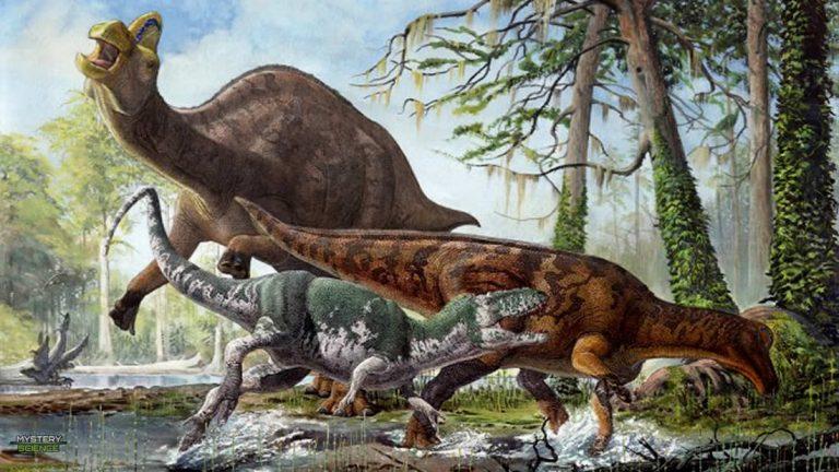 Hallan rara enfermedad humana en la cola fosilizada de un dinosaurio