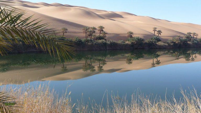 humanos comían peces en el Sahara antes de que se convirtiera en un desierto