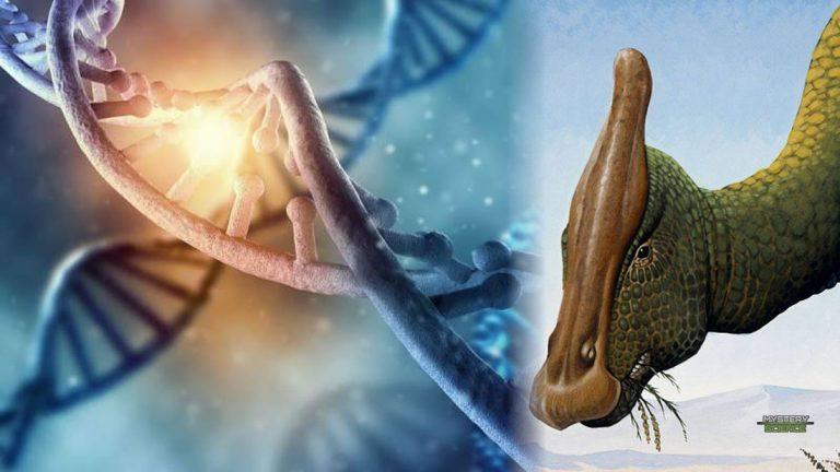 Encuentran 'ADN' de 75 millones de años preservado en un dinosaurio
