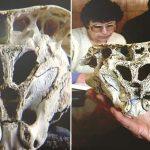 El Cráneo de Rhodope, un hallazgo que la ciencia no ha podido explicar