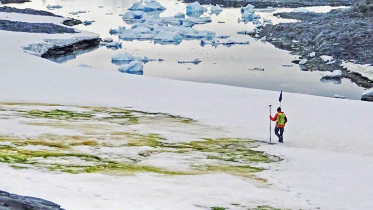 La nieve de la Antártida se está volviendo verde