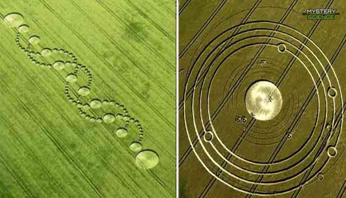 Los crop circles son hechos por extraterrestres
