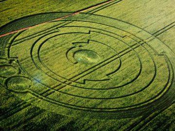 Crop Cricles ¿Qué hay detrás de los círculos de cultivos?