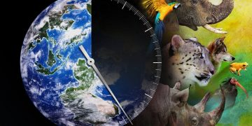 Sexta extinción masiva se está acelerando advierten los científicos