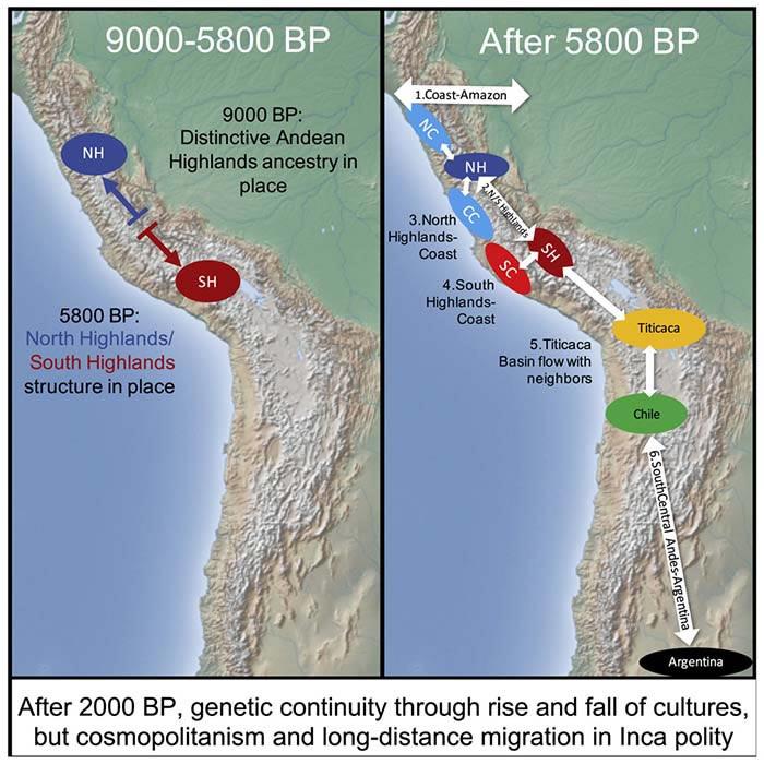 Mapa genético del cambio de estructura genómica de las civilizaciones andinas