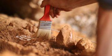 Hallan 150 antiguas tumbas cristianas y un sarcófago de 1.500 años en Francia