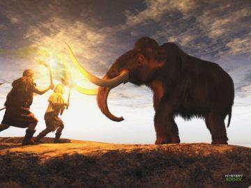 Descubren en Siberia imágenes de camellos grabadas en un colmillo de mamut de 13,000 años