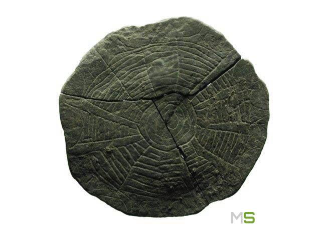 Discos de piedra de Vasagard