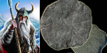 300 misteriosos discos de piedra hallados en un antiguo templo de hace 5.000 años en Dinamarca