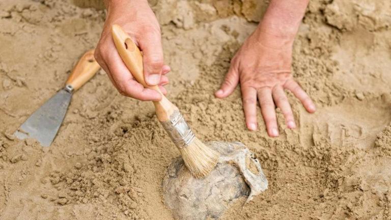 Hallan restos de 2.500 años de una pareja, un bebé y una mujer a sus pies