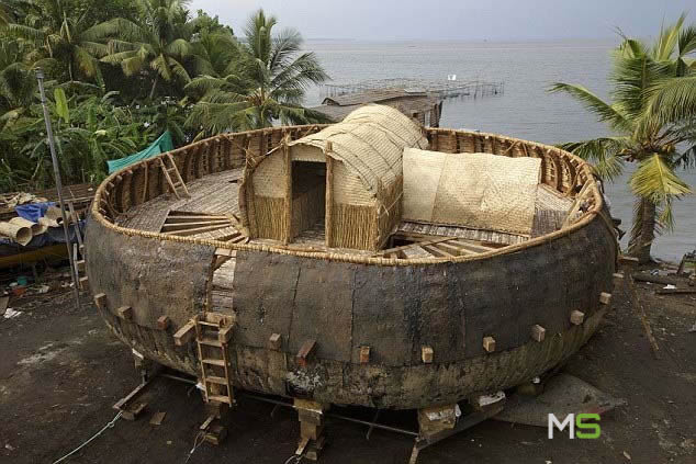 Arca de Noé circular
