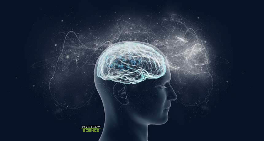 Posible ubicación física de la conciencia