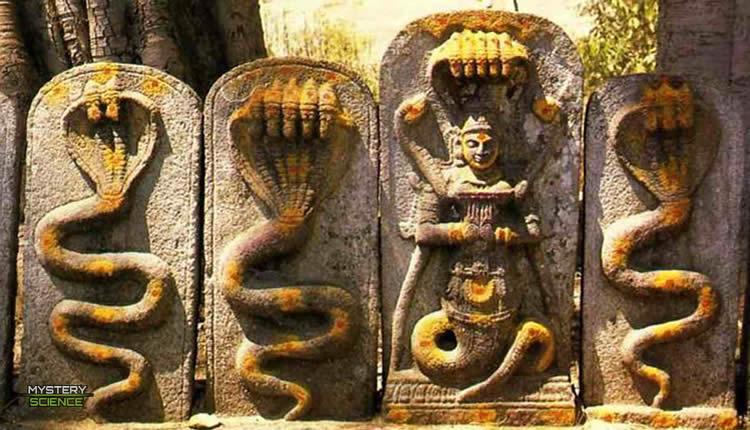 Dioses reptilianos