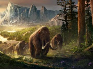Extraen el ADN más antiguo del mundo de mamuts de más de un millón de años