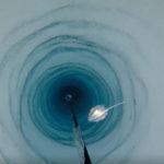 Encuentran misteriosas formas de vida debajo de la Antártida (VIDEO)