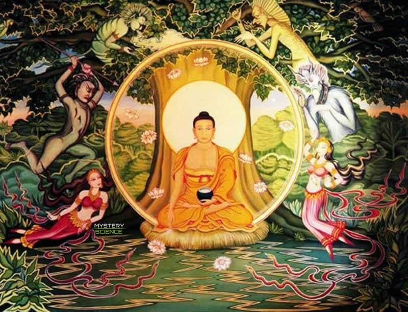árbol de la vida budismo