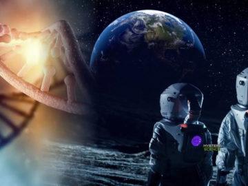 Científicos planean crear un 'arca lunar' para salvaguardar el ADN de millones de especies