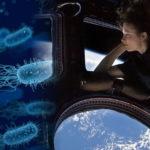 Hallan microbios desconocidos para la ciencia en la Estación Espacial Internacional