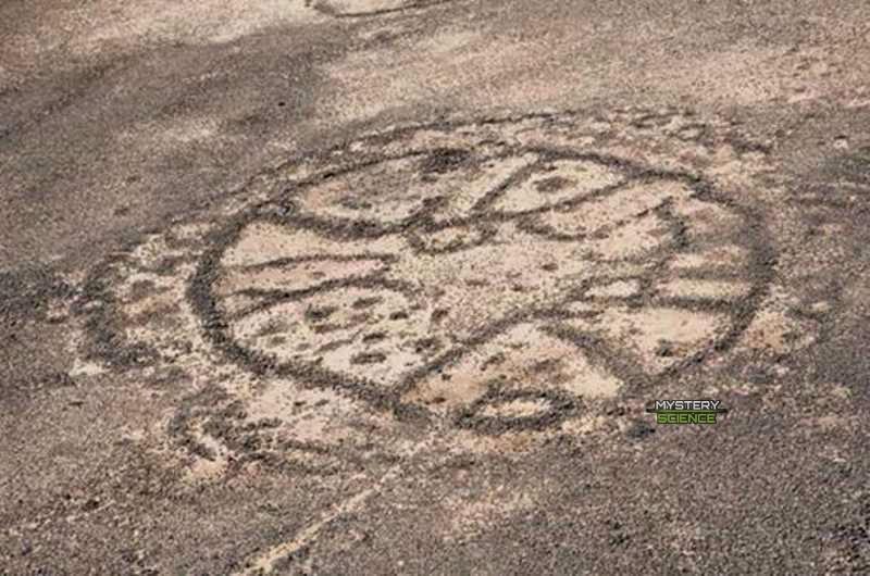 Fotografía aérea de algunos de los círculos misteriosos en el desierto de Jordania