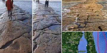 «Carretera» de piedra gigante resurge desde debajo del océano Pacífico