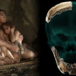 Descubren los restos de una especie humana previamente desconocida