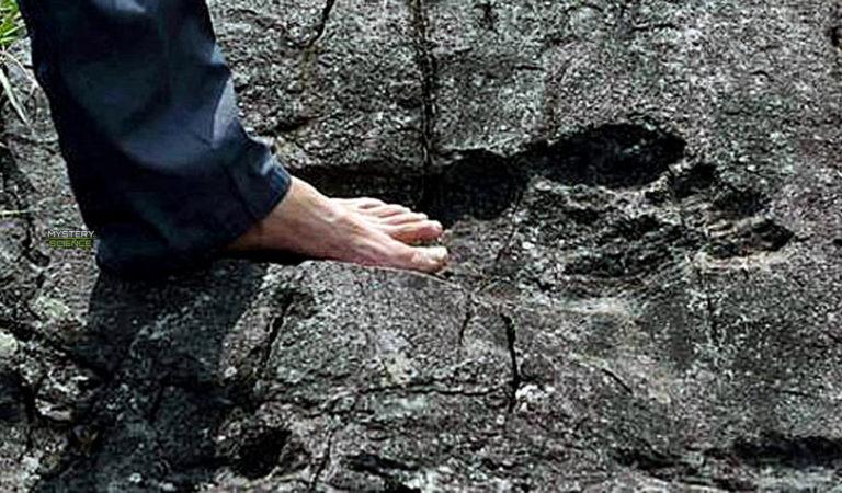 La sorprendente huella gigante fosilizada con forma de pie humano