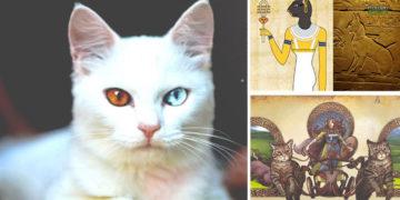 Mitología felina y su importancia en varias culturas antiguas
